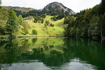 Fontanella Waldsee von Stefan Havadi-Nagy