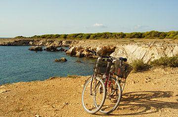 Twee fietsen aan de zee van Jadzia Klimkiewicz