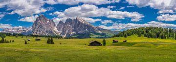 Alpe Di Siusi - Seiser Alm - Dolomieten panorama