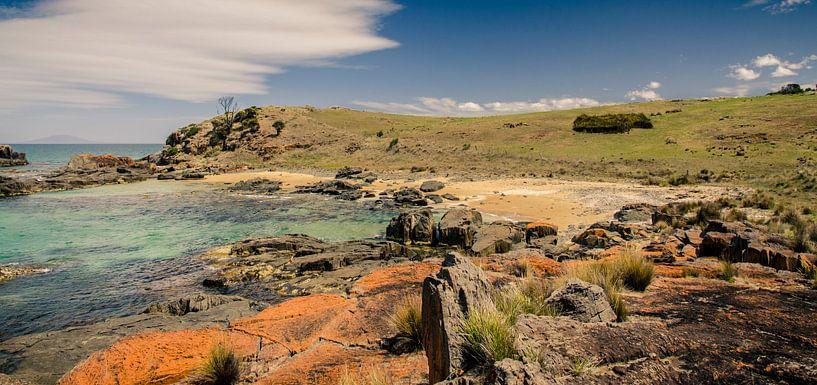 Spiky Beach in Tasmanië, Australië van Sven Wildschut