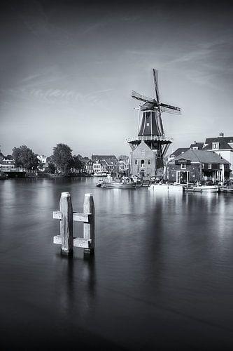 Paysage urbain de Haarlem