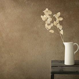 Stilleven met gedroogde Lunaria (judaspenning) van Mayra Pama-Luiten