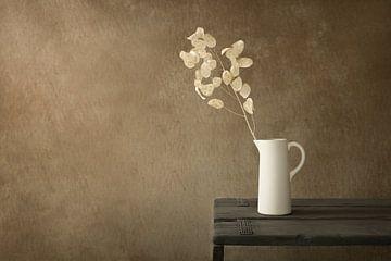 Stilleven met gedroogde Lunaria (judaspenning)