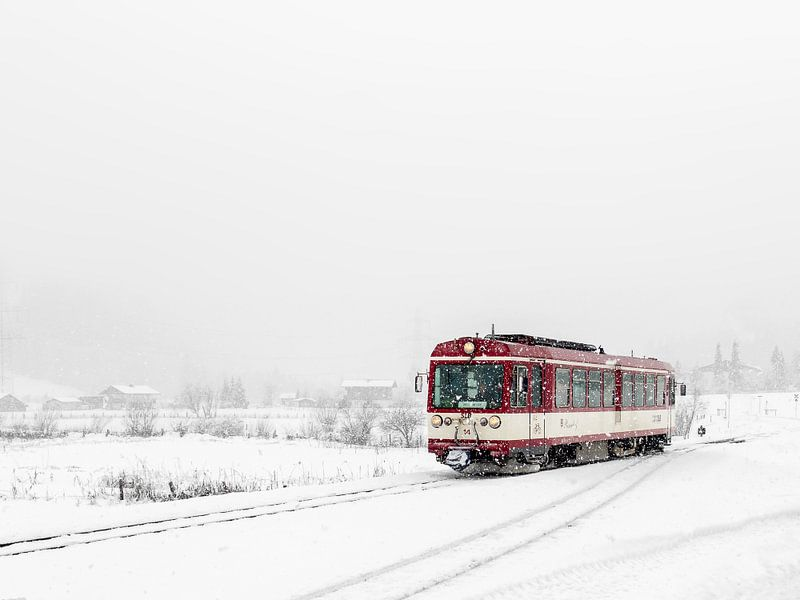Polar Express van Edwin van Wijk