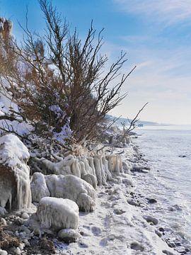 Bevroren strand - steile kust Hoge oever, Ahrenshoop, Darß van Jörg Hausmann