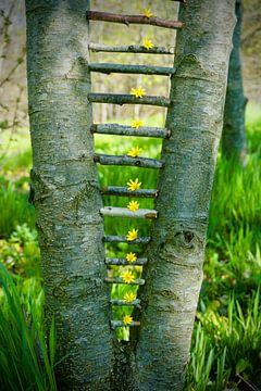 Een tree overslaan