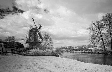 Windmolen van Chiel Lammers