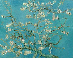 Amandelbloesem schilderij van Vincent van Gogh van