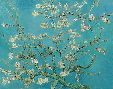 Mandelbaum in Blüte - Vincent van Gogh von