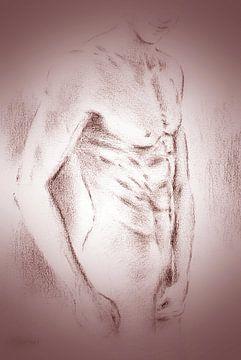 Verleidelijke mannen naakt - erotische tekeningen van Marita Zacharias