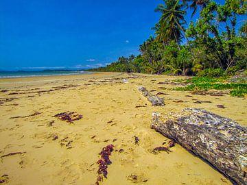 Verlaten strand bij de 'wet tropics' in Queensland, Australie van Rietje Bulthuis
