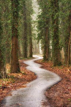 Der Schlangenweg, Gelderland von Lars van de Goor