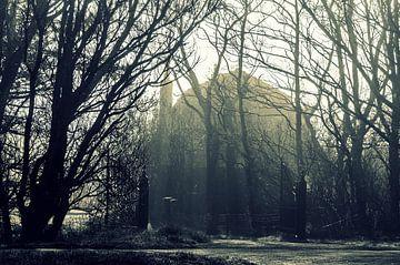 Oud huis in Harlingen in de mist van Sidney Portier