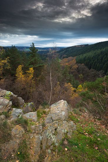 Rotsformatie in de Belgische Ardennen in de herfst.