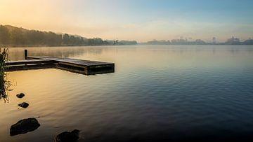 Kralingse Plas in Rotterdam bij mist van Pieter van Dieren (pidi.photo)