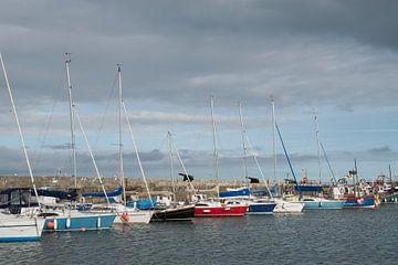 Jachthaven Lyme Regis van Elles Rijsdijk