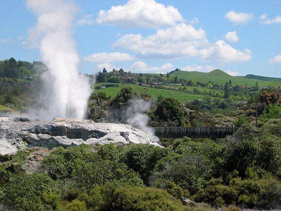 Geiser in Rotorua van Gert-Jan Siesling