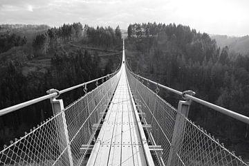 Geierlay Hängebrücke von Lisa Gallo