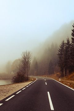 Mistige weg in Oostenrijk