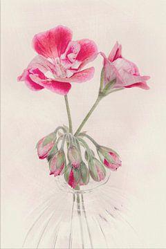 Bloem in vaas , roze gekleurd von Marga Goudsbloem