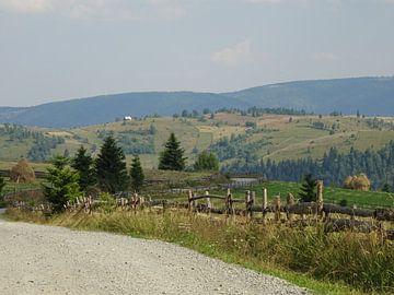 Heuvels in Roemenië (3)  von Wilma Rigo