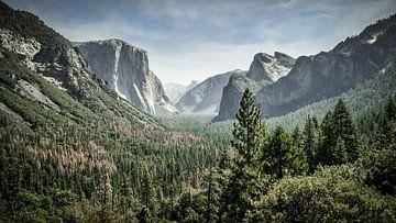 Yosemite in seiner schönsten Form von Chantal Nederstigt