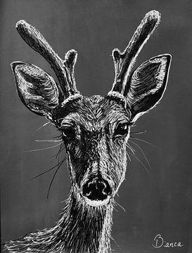 Federzeichnung Hirsch schwarz-weiß von Bianca ter Riet