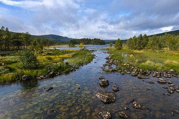 Holmevatnet Norwegen von Joke Beers-Blom