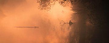 Panorama der Morgenröte von Bart Hardorff