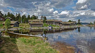 Norway van