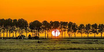 Zonsondergang door de bomen van Warns in het Friese Gaasterland ter hoogte van Laaksum. van