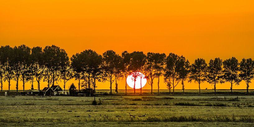 Zonsondergang door de bomen van Warns in het Friese Gaasterland ter hoogte van Laaksum. van Harrie Muis