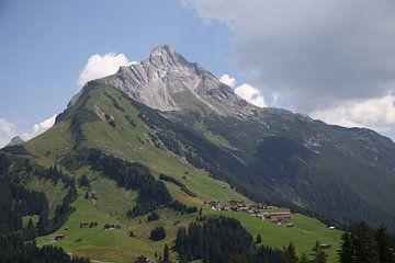 Alpenpanorama von Erich Werner