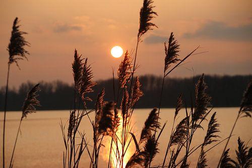 Sonnenuntergang über dem Fluss Rotte von