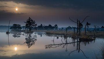 Reflexion bei Sonnenaufgang von René Groenendijk