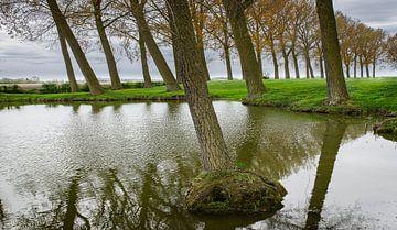 0830 Elverdinge van Adrien Hendrickx