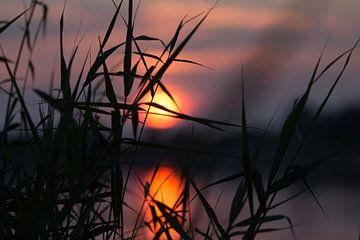 Sonnenuntergang von Annett Mirsberger