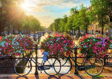 Amsterdam zonnige brug II sur Dennis van de Water