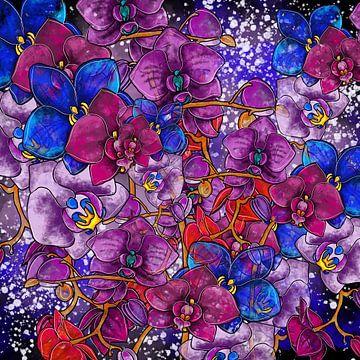 Bloemmotief - Kleurrijke orchideeën op zwarte achtergrond van Patricia Piotrak