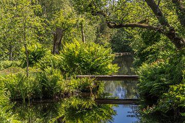 Groen paradijs van Peter Leenen