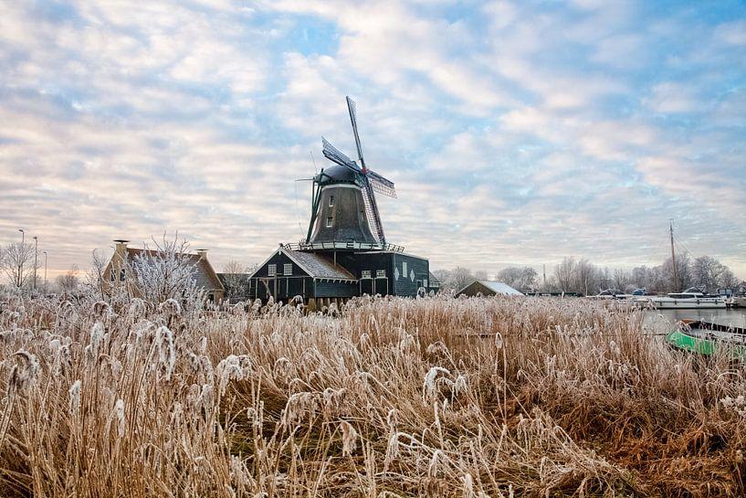 De windmolen De Rat bij IJlst in Friesland. Wout Kok One2expose Photography van Wout Kok