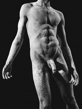 Hele mooie naakte man met prachtig gespierd lichaam. van william langeveld