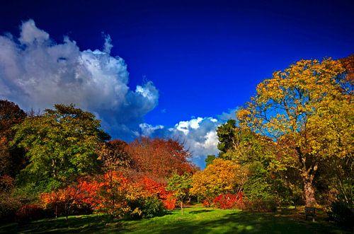 Herfstkleuren von Wouter Sikkema