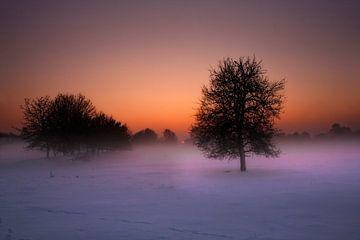 Winterse zonsondergang van Eus Driessen