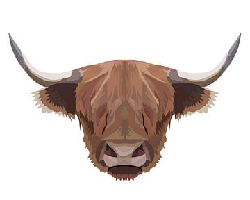 Schotse hooglander witte achtergrond van Anne Dellaert