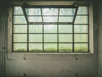 groot raam van binnen naar buiten van