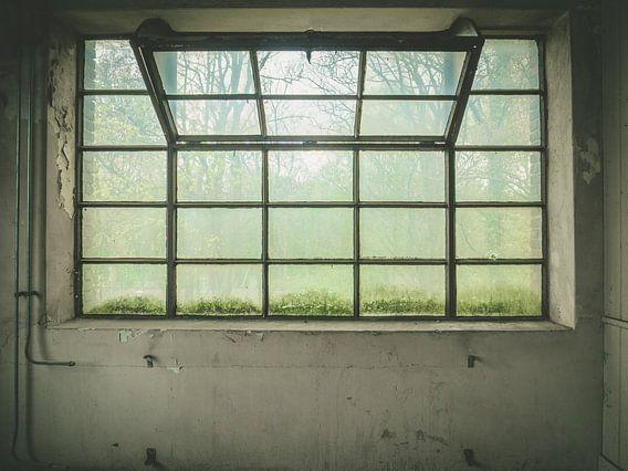 groot raam van binnen naar buiten