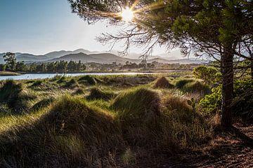 Landschaft mit See bei Budoni von Thomas Heitz