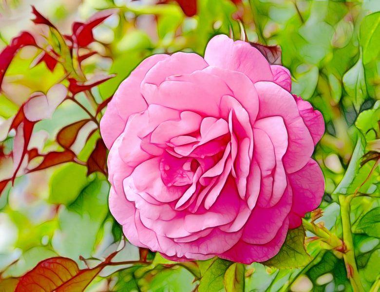 Summer Rose (Roze Roos) van Caroline Lichthart