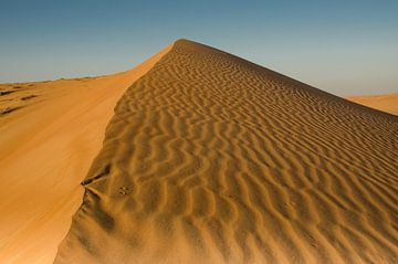 Golvende zandduinen van